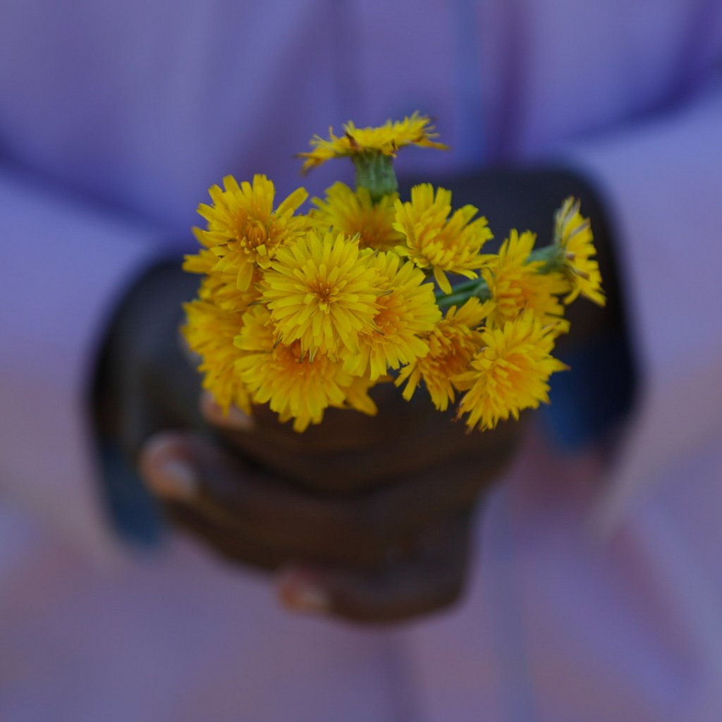 Shembe and Flowers